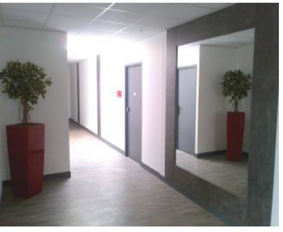 Entreprise à louer - 52,0 m2 - 77 - ILE-DE-FRANCE