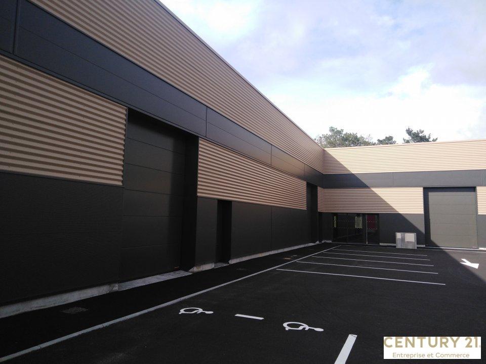 Vente entreprise - Sarthe (72) - 1685.0 m²