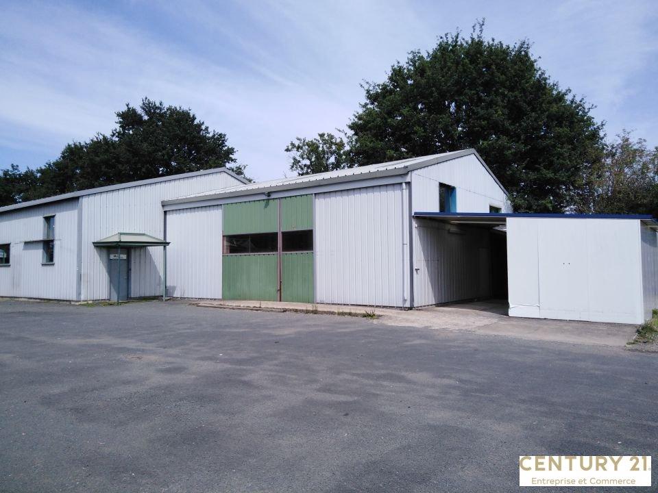 Local d'activité - 450 m² - SAVIGNE L EVEQUE