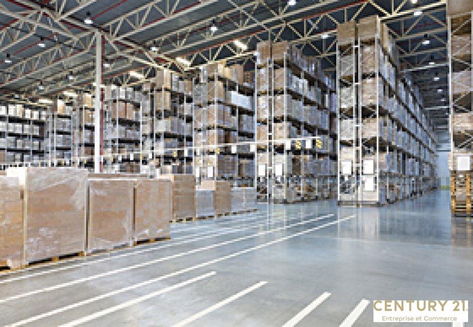 Vente entreprise - Sarthe (72) - 2900.0 m²