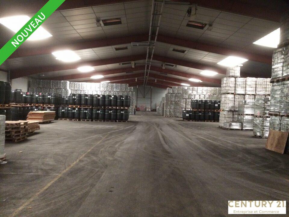 Entrepôt à vendre - 13877.0 m2 - 72 - Sarthe